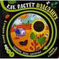 russische bücher:  - Как растёт подсолнух (книга с пазлами)